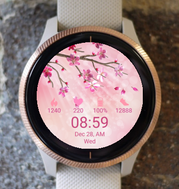 Garmin Watch Face - Spring Sunlight 02