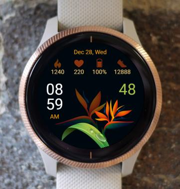 Garmin Watch Face - Tropical Flower