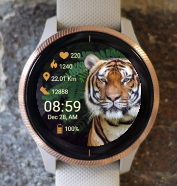 Garmin Watch Face - Tiger
