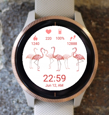 Garmin Watch Face - Flamingos