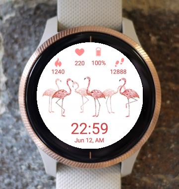 Garmin Watch Face - Flamingos