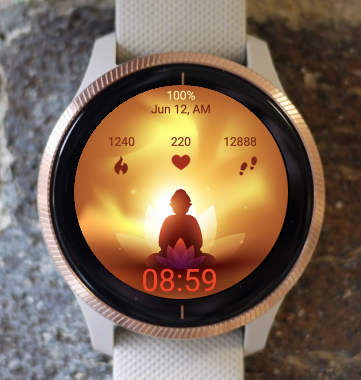 Garmin Watch Face - Vesak Two