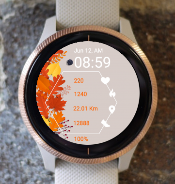Garmin Watch Face - Autumn X1