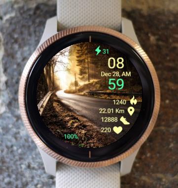 Garmin Watch Face - Light And Road
