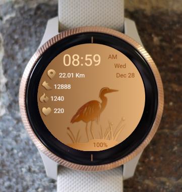 Garmin Watch Face - Bird 01