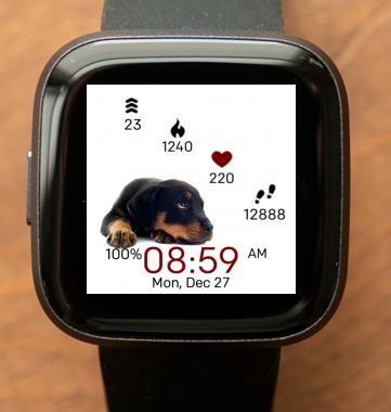 Puppy Wait
