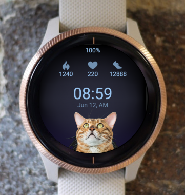 Garmin Watch Face - Curious Cat