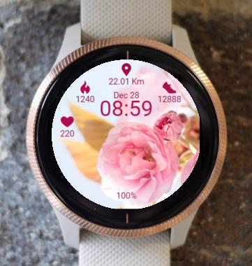 Garmin Watch Face - Softness