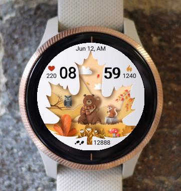 Garmin Watch Face - Autumn Magic 30