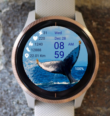 Garmin Watch Face - Whale 01