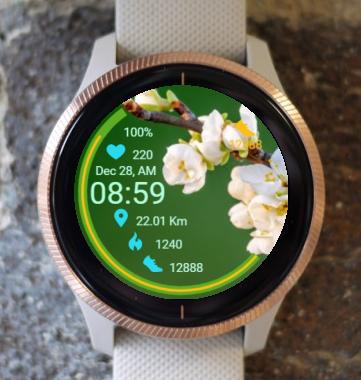 Garmin Watch Face - Flowering Apple