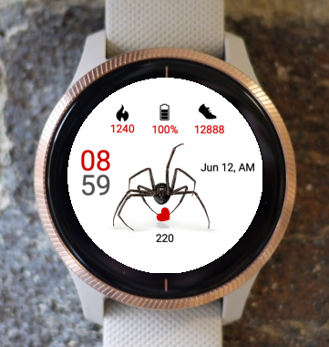 Garmin Watch Face - Spider