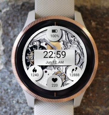 Garmin Watch Face - BW 1001