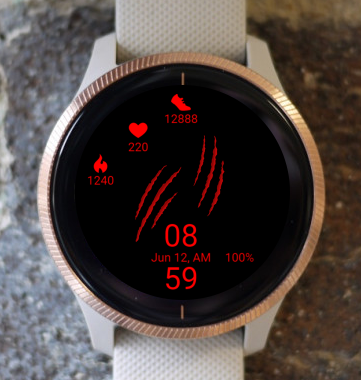 Garmin Watch Face - Scratch