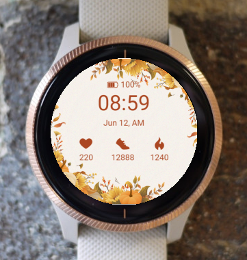 Garmin Watch Face - Autumn frame