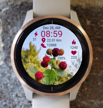 Garmin Watch Face - Raspberry
