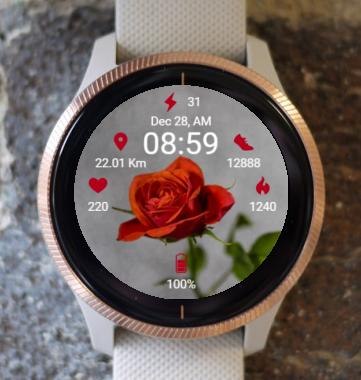 Garmin Watch Face - Life In Gray