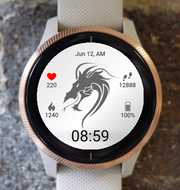 Garmin Watch Face - BW D206