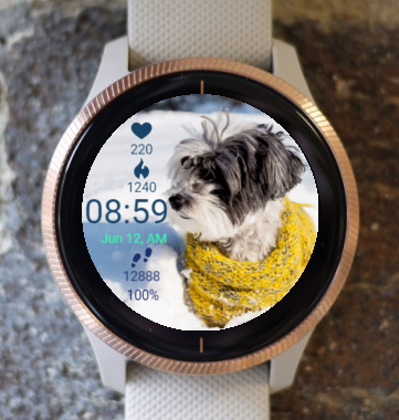 Garmin Watch Face - Watching Dog