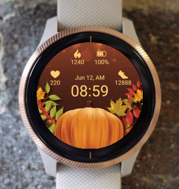 Garmin Watch Face - Autumn colors
