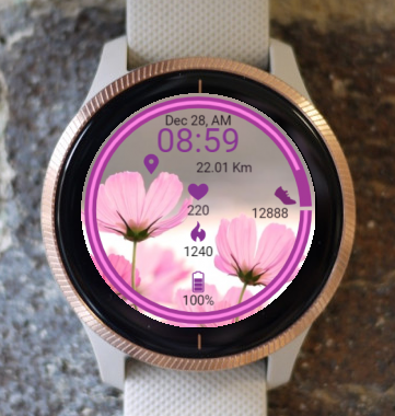 Garmin Watch Face - Cosmos Flowers