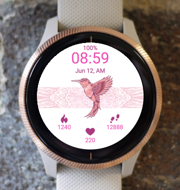 Garmin Watch Face - Hummingbird