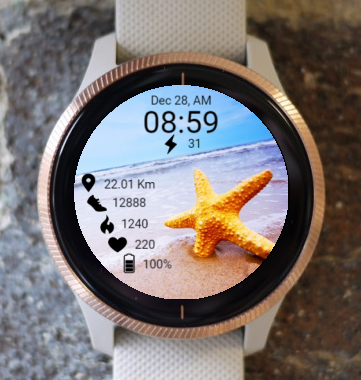 Garmin Watch Face - Starfish