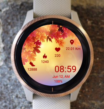 Garmin Watch Face - Autumn Sunlight