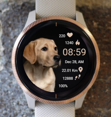 Garmin Watch Face - Ga Watching