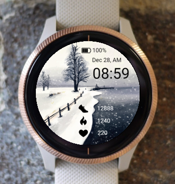 Garmin Watch Face - Winter by the lake