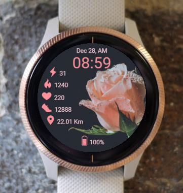 Garmin Watch Face - B Dewy Rose