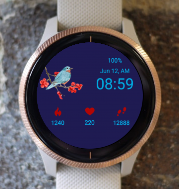 Garmin Watch Face - Blue Bird