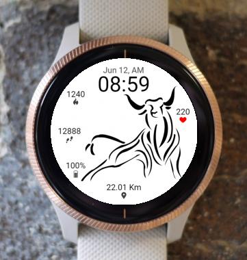 Garmin Watch Face - BW D205