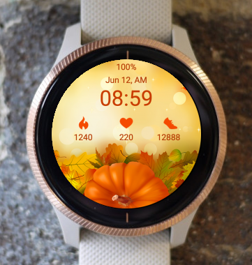 Garmin Watch Face - Pumpkin Fall
