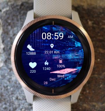 Garmin Watch Face - System