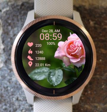 Garmin Watch Face - RR Rose