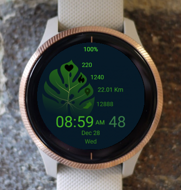 Garmin Watch Face - Green Leaf