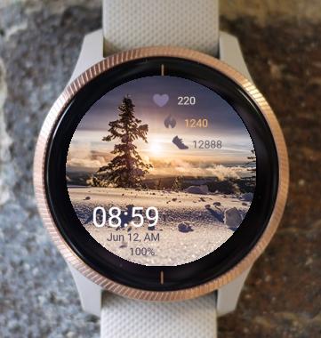 Garmin Watch Face - Wonderful Winter