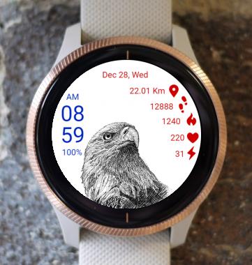 Garmin Watch Face - Bald Eagle 01