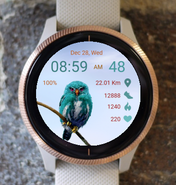 Garmin Watch Face - Blue Owl