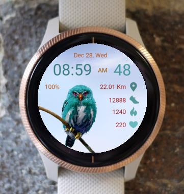Garmin Watch Face - Blue Owl