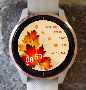Garmin Watch Face - Autumn LF