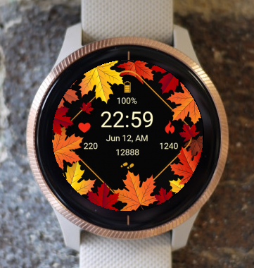 Garmin Watch Face - Autumn Magic 09