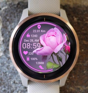 Garmin Watch Face - Strange Rose