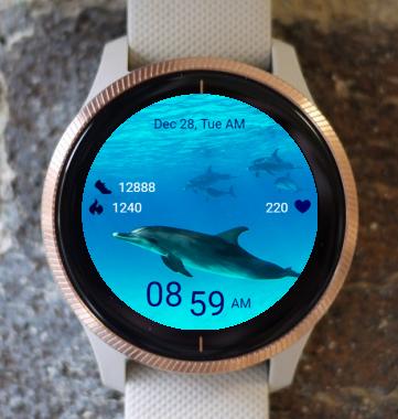 Garmin Watch Face - Dolphin 02