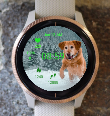 Garmin Watch Face - Happy Dog