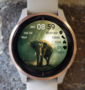 Garmin Watch Face - Elephant