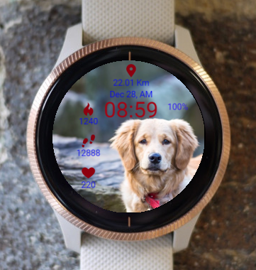 Garmin Watch Face - Sincere Attention