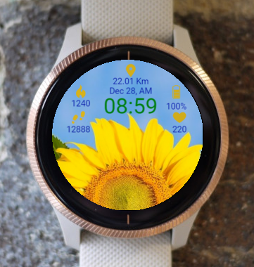 Garmin Watch Face - Sunflower
