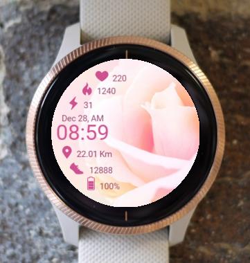 Garmin Watch Face - Softly RR